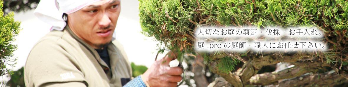 真剣に剪定する岡山の庭師
