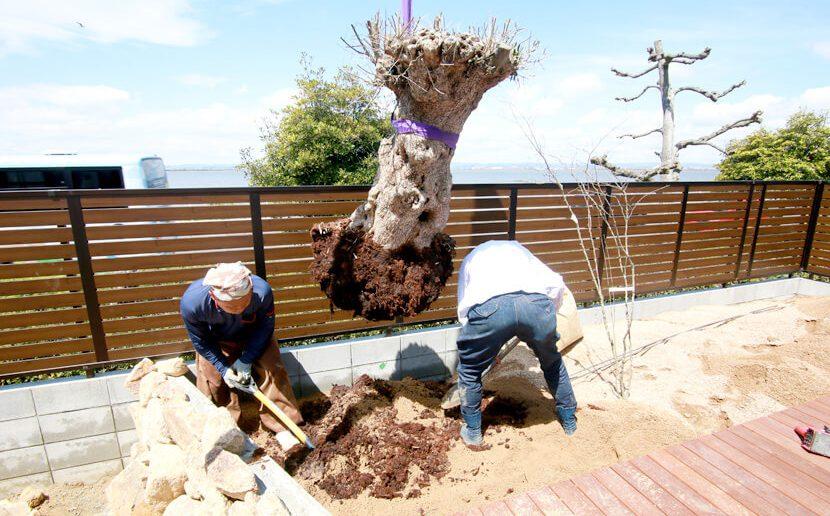 プロと一緒に進める庭づくりのメリットとは?