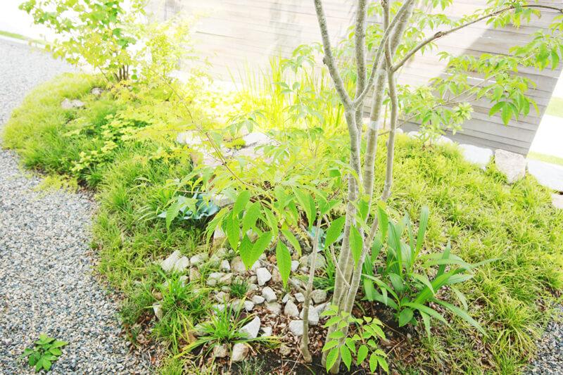 四季のある日本で四季を感じる事の当然の贅沢